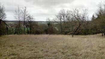 terrain à La Roche-Posay (86)