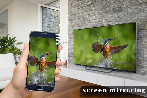 Screen Mirroring with TV : Connect Mobile to TV 1.1 screenshots 5