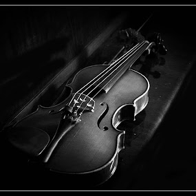 violin by Darko Kordic - Artistic Objects Musical Instruments