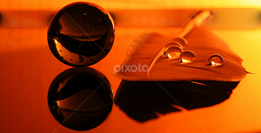 by Pinaki Ghosh - Artistic Objects Other Objects