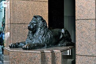 Photo: Raion (oroszlán), Ginza