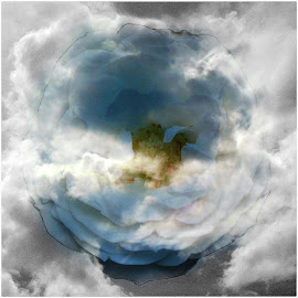 my favorite flower in the sky by Paul Wante - Digital Art Abstract ( digital, sky, art, abstract, flower )