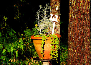 Photo: May 8, 2012 - Pedestal Flower #creative366project curated by +Jeff Matsuya and +Takahiro Yamamoto #under5k +Creative 366 Project
