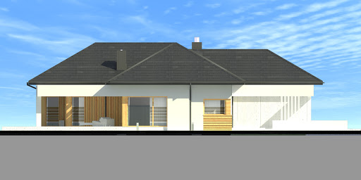 New House 8 - Elewacja lewa