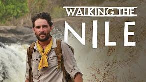 Walking The Nile thumbnail