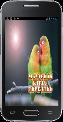 Masteran Kicau Lovebird