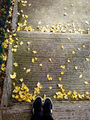 Autumn in Paris di AmbraVaniglia