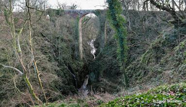 Photo: Railway  Viaduct, Dell of Finella