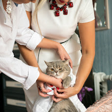 Wedding photographer Roman Nozhenko (romannozhenko). Photo of 16.05.2017