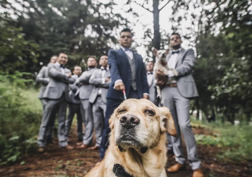 Wedding photographer Elena Flexas (ElenaFlexas). Photo of 15.11.2018
