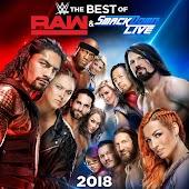 WWE: Best of Raw & SmackDown 2018