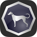 Sighthound Video icon