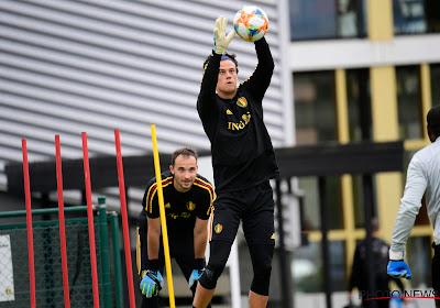 Nederlandse club wil Mile Svilar graag huren van Benfica