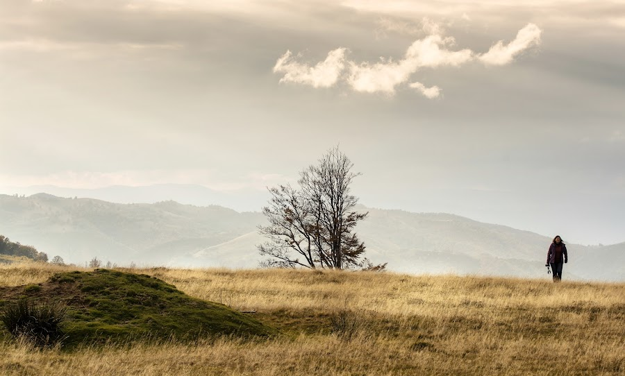 Immensity by Grigore Roibu - Landscapes Travel ( hills, person, sky, grass, sunset, silhouette, woman, art, minimalism, cloud, trees, travel, landscape, misty, mist )