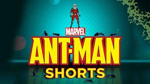 Marvel's Ant-Man Shorts thumbnail