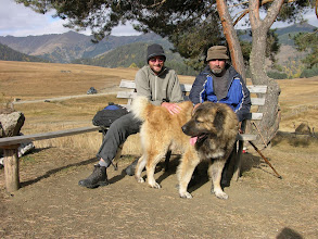 Photo: Mick, our host Vaja and his massive and loveable Caucasian dog, Loma.