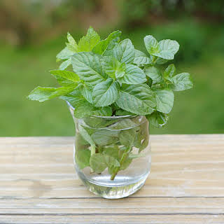 Fresh Mint Infused Vodka.