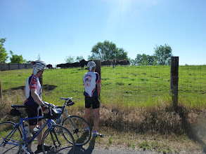 Photo: Day 9 Fruitland ID to Meridian (near Boise) ID 60 miles 2000' climbing: We got lost out of Fruitland. Getting pictures of buffalo