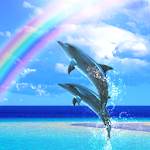 Dolphin Rainbow Icon