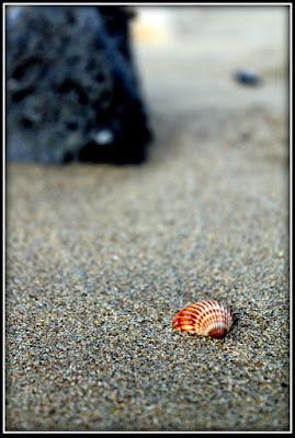 Sulla spiaggia... di mc.indaimo