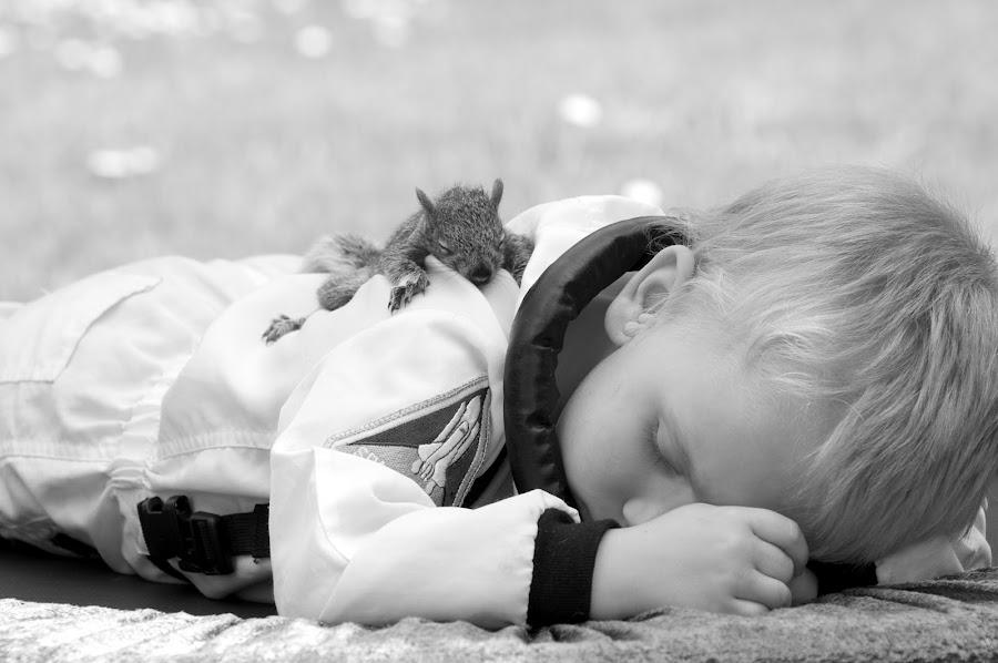 Sleeping Friends by Catherine Trudeau - Babies & Children Children Candids ( nap, sleeping, sleep, boy, squirrel )