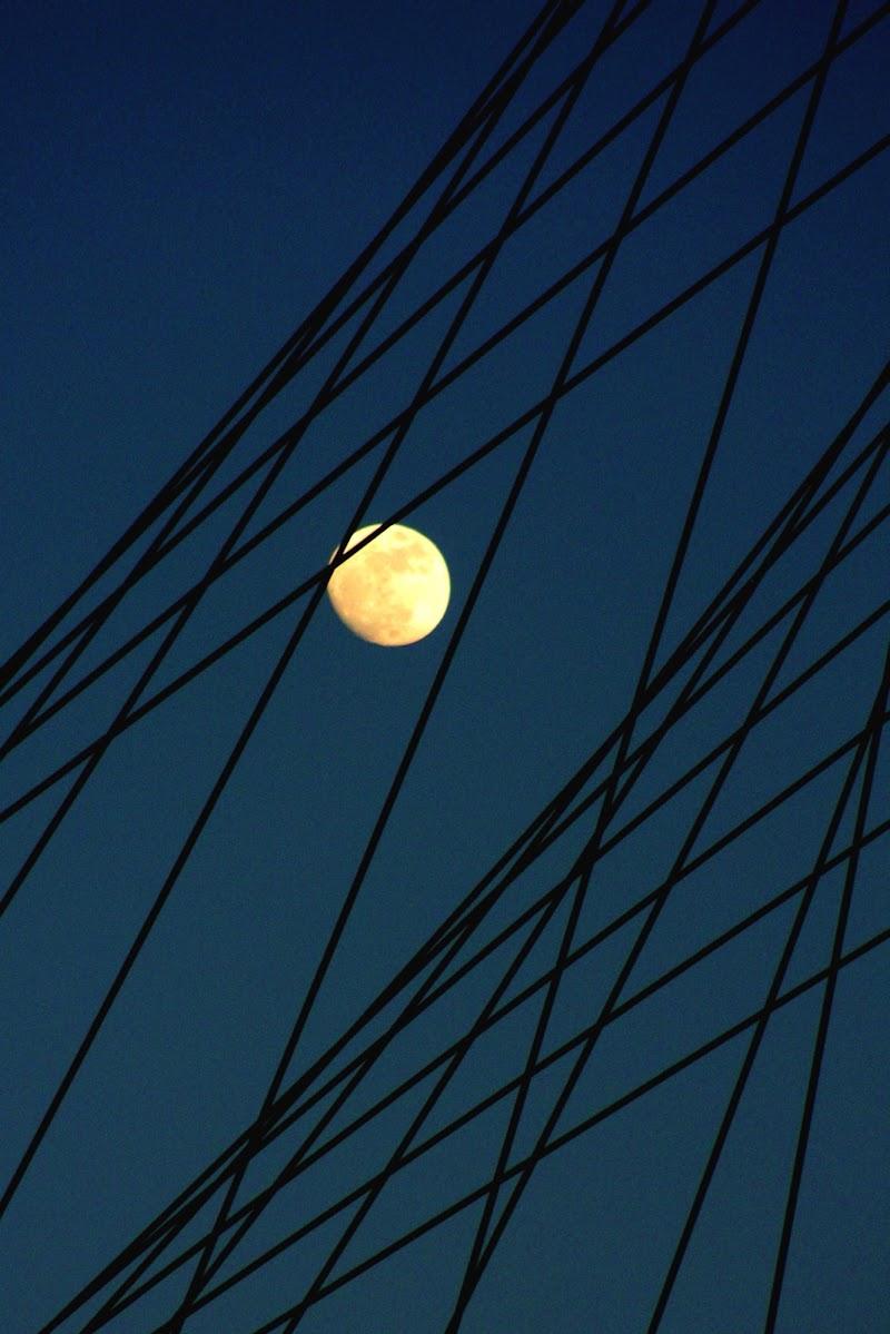 La luna e Calatrava di paolo-spagg