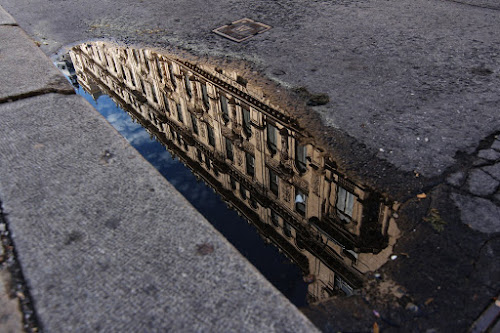 Vienna view by Nicu Buculei - Buildings & Architecture Architectural Detail ( water, detail, building, vienna, street, mirrored, puddle, archirecture, reflexion, reflection, reflections, mirror, , Urban, City, Lifestyle )