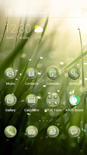 The Lush Leaves theme for APUS