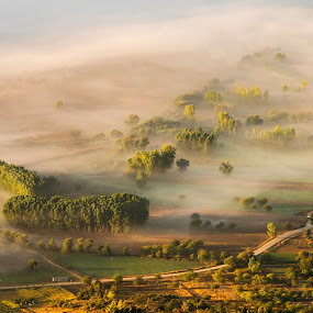 morning light by Nick Antonopoulos - Landscapes Mountains & Hills ( nature, fog, trees, sunrise, hiking )