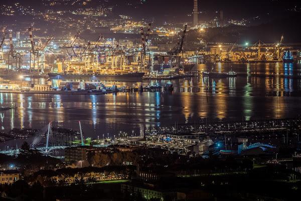 Porto di La Spezia  di Simonetti Andrea