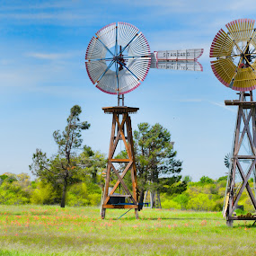 wind city by Sharyl Goodpaster - Landscapes Prairies, Meadows & Fields ( spring, windmills, trees, landscape, meadow )