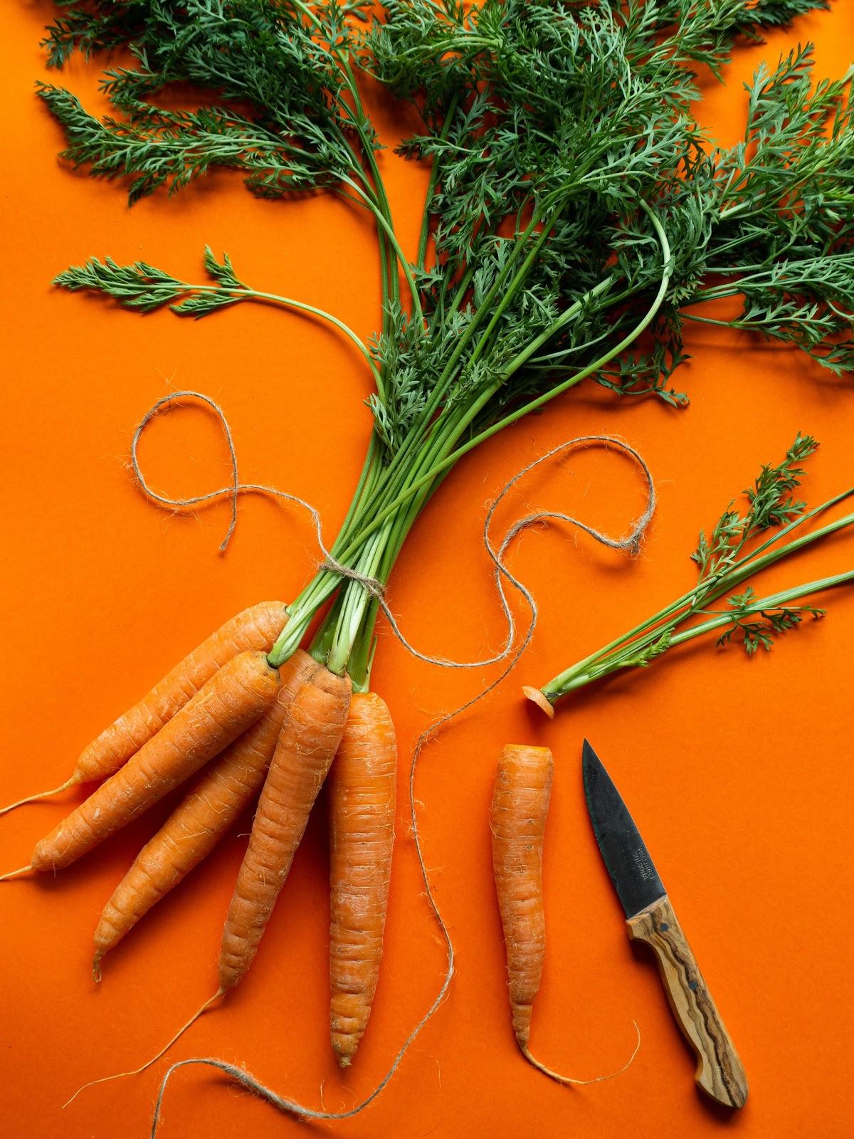 Wann sind Karotten schlecht?