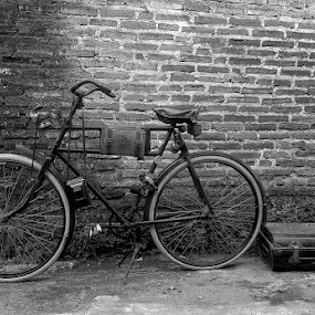 Old bike and suitcase by Harry Suryo - Transportation Bicycles