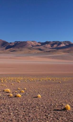 ボリビアの壁紙とテーマ