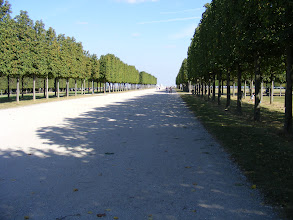 Photo: The broader Allée Louis XIV leads to the grounds' famous overlook.