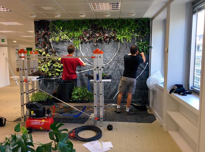 Conjunto de jardines verticales de interior para oficinas for Jardines verticales para interiores