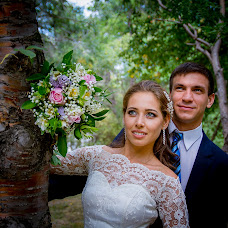 Wedding photographer Elena Andrianova (andrianovaelena). Photo of 23.01.2017