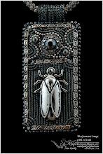 Photo: The Geometric Image with a Cicada - Геометричний малюнок з цикадою