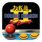 Code Double Dragon 2 Arcade Icon