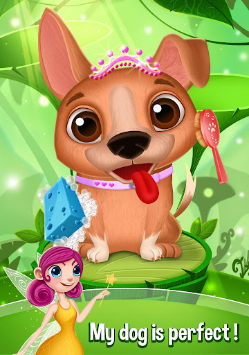 Princess Fairy Pet Salon