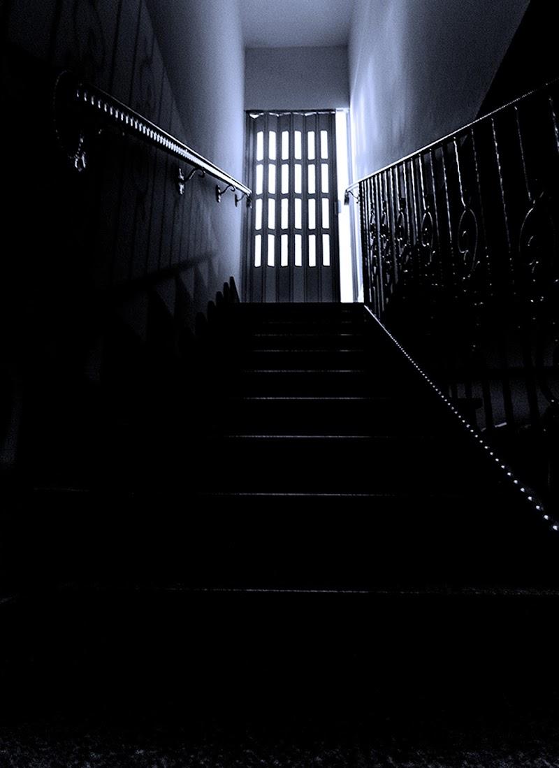 The mystery door di Daniele Pernolino