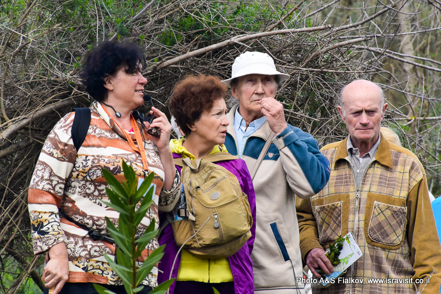 Гид по Израилю. Светлана Фиалкова. Экскурсия в национальном парке на севере Израиля.