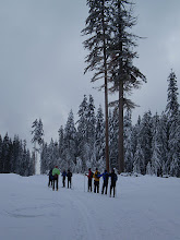 Photo: The Sentinels - Larch Hills