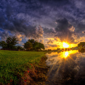 Piercing Sun by Nemanja Stanisic - Landscapes Sunsets & Sunrises ( clouds, field, reflection, sky, sunset, cloud, trees, lake, forest, dark clouds, pond, sun,  )