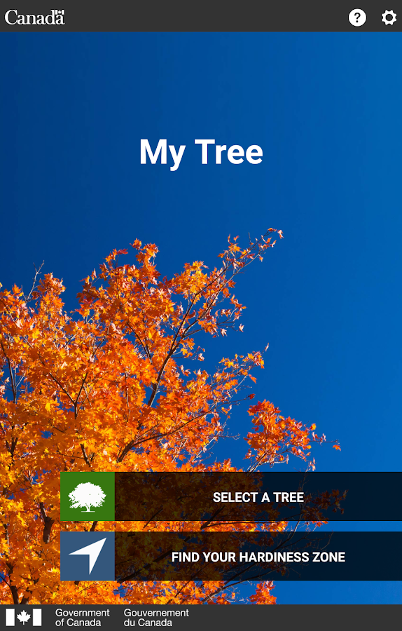 My Tree- screenshot