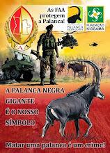Photo: And flyers distributed in Luando E folhetos distribuídos no Luando