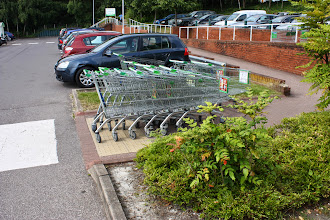 Photo: When we got back to the carpark it was even busier than before and there were lots of trollies abandoned on the paths (which is tricky when you are walking or pushing a trolley with a toddler)