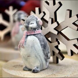 xmas decoration by Nic Scott - Public Holidays Christmas ( snowflake, christmas, decoration, penguin )