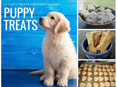 17 Puppy Treats for Your Best Friend