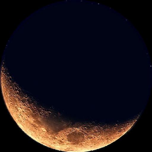 Organic Lunar Calendar